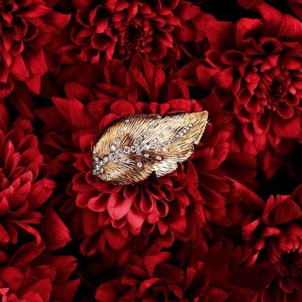 Anillo Extremely Piaget de oro rosa y diamantes para mujer