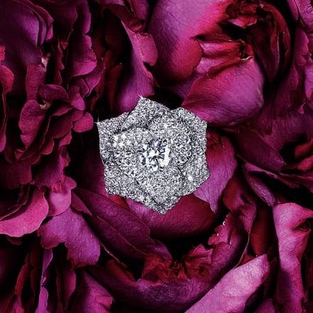 Anillo Piaget Rosa de oro blanco y diamantes